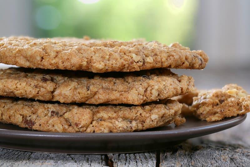 Печенья грецкого ореха овсяной каши обломока шоколада стоковые фотографии rf