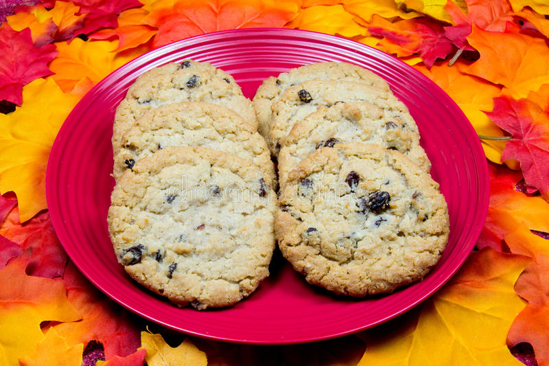 Печенья овсяной каши и изюминки стоковое изображение