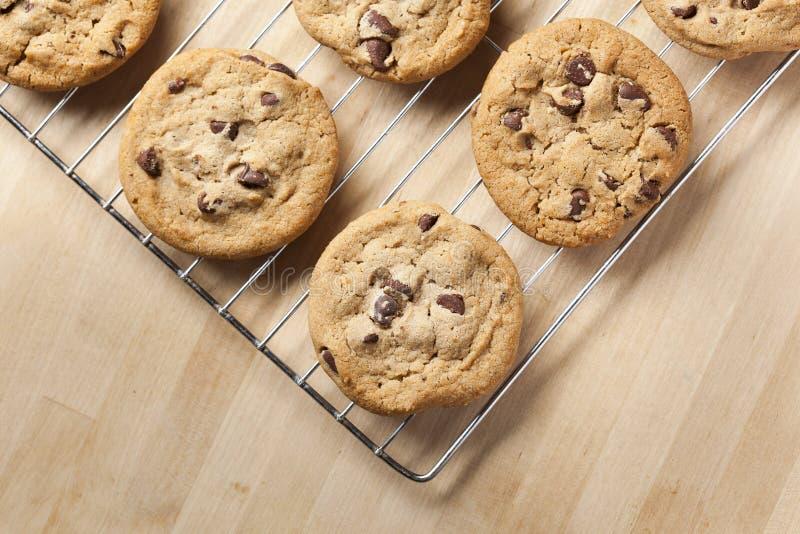 печенья шоколада обломока свежие стоковое изображение rf