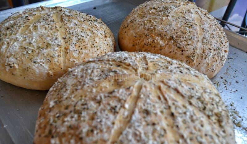 Печь итальянского хлеба деревянная с точными травами стоковые изображения