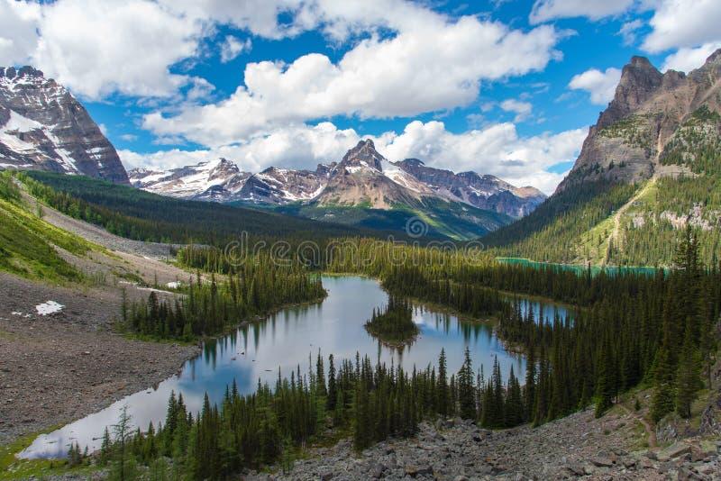 Пешая тропа озера Opabin красивая в пасмурном дне весной, Yoho, Канада стоковое изображение rf