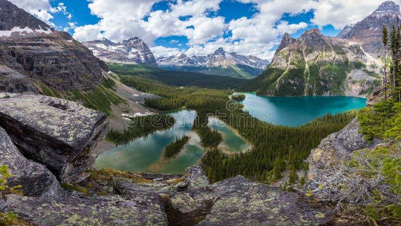 Пешая тропа озера Opabin красивая в пасмурном дне весной, Yoho, Канада стоковые изображения rf