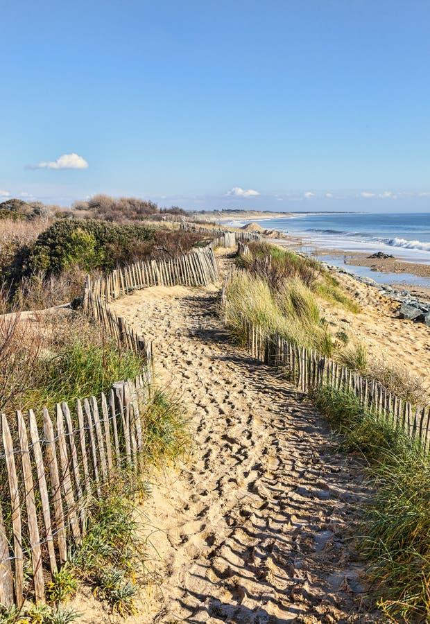 Пешеходная дорожка на атлантической дюне в Бретани стоковое фото rf