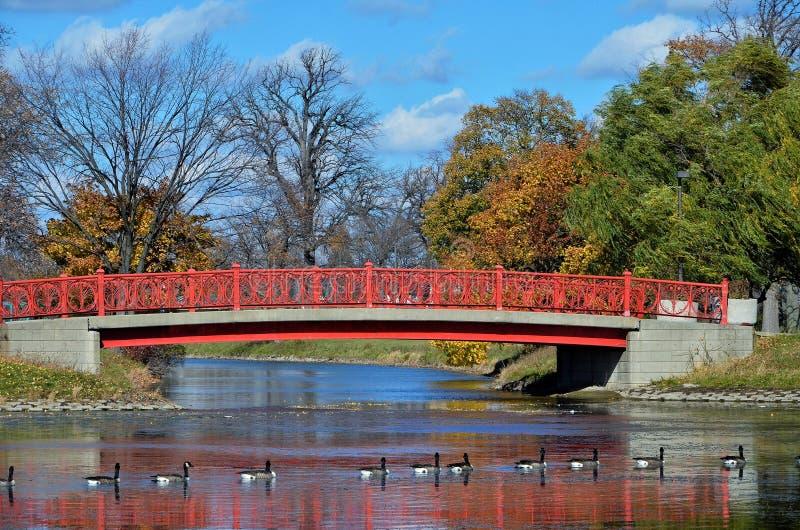 Пешеходный мост на острове красавицы, Детройте стоковые изображения rf