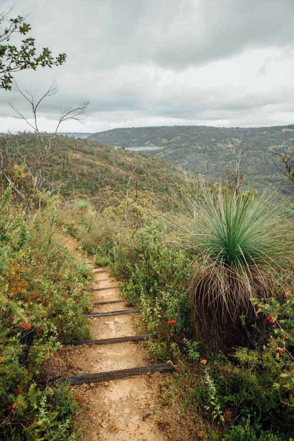Пеший путь вдоль тропы Numbat, Gidgegannup, западной Австралии, Австралии стоковая фотография rf