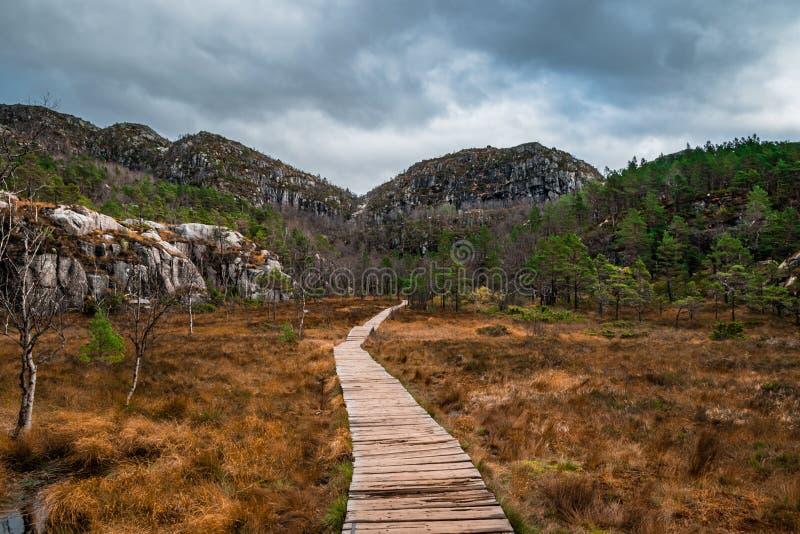 Пеший путь Preikestolen Норвегия в осени стоковые фотографии rf