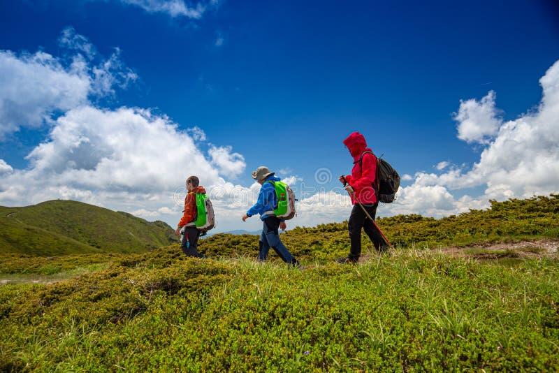 Пеший туризм в горах стоковые изображения