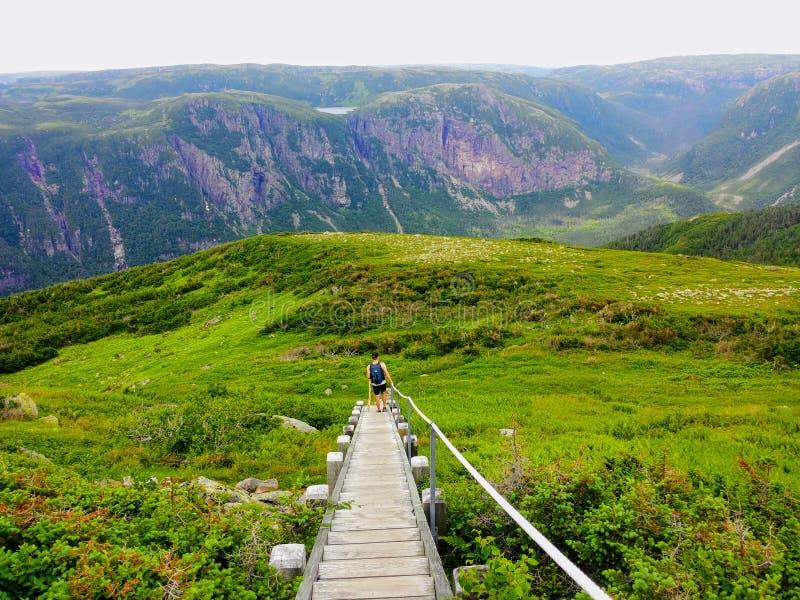 Пеший туризм в красивом национальном парке Gros Morne на Mou Gros Morne стоковые изображения rf
