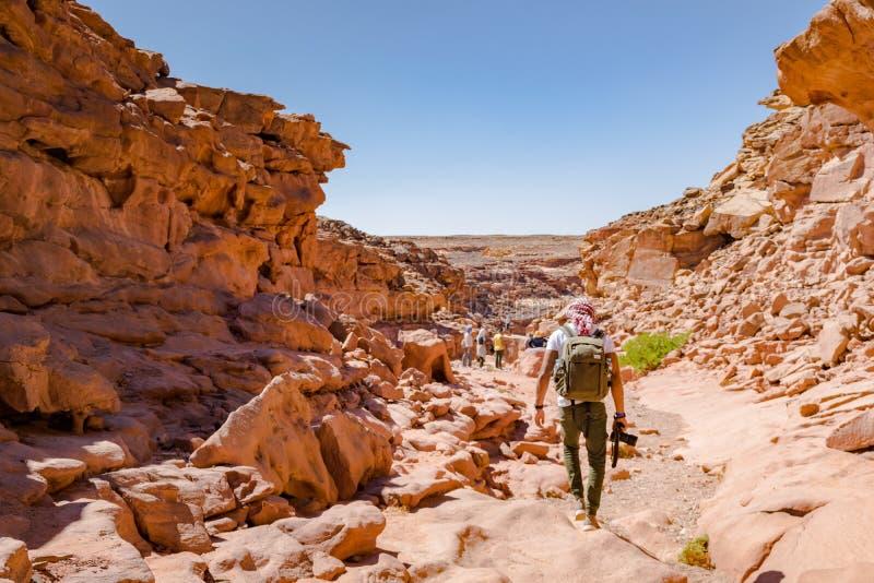 Пеший туризм в Dahab, каньон цвета, Египет стоковые изображения