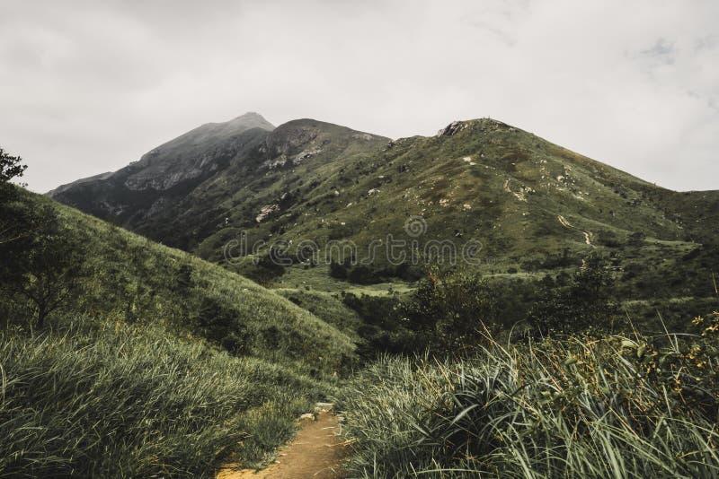 Пеший туризм к верхней части горы стоковое изображение