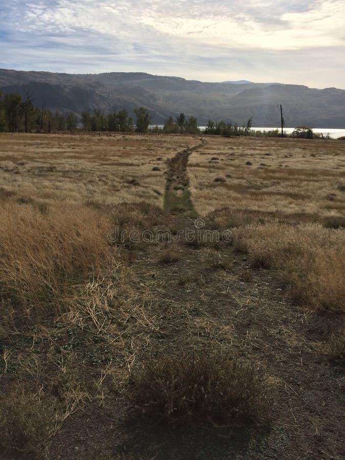 Пеший туризм к озеру в Kamloops! стоковые изображения