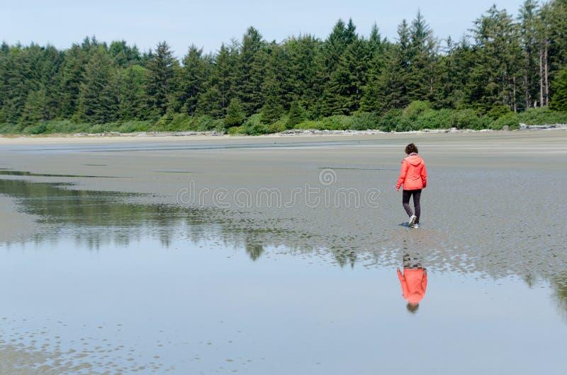 Пеший туризм на пляже бухты Schoonrs, Tofino стоковая фотография