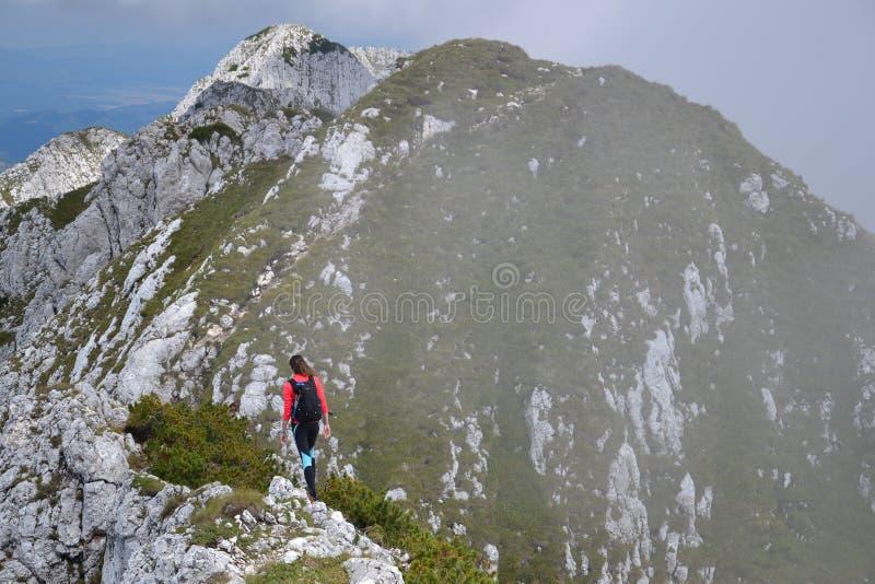 Пеший туризм на Ридже горы Piatra Craiului стоковое фото rf