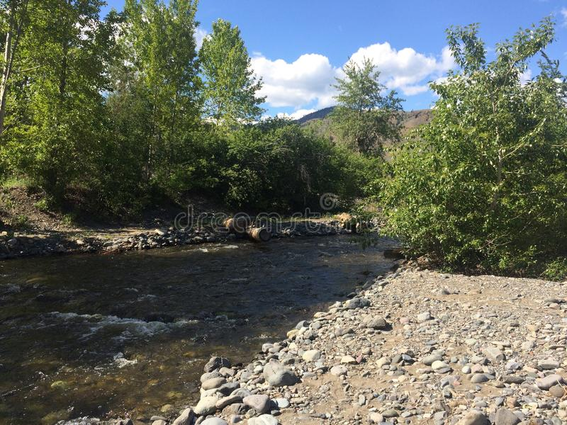 Пеший туризм около красивого потока Kamloops стоковое фото rf