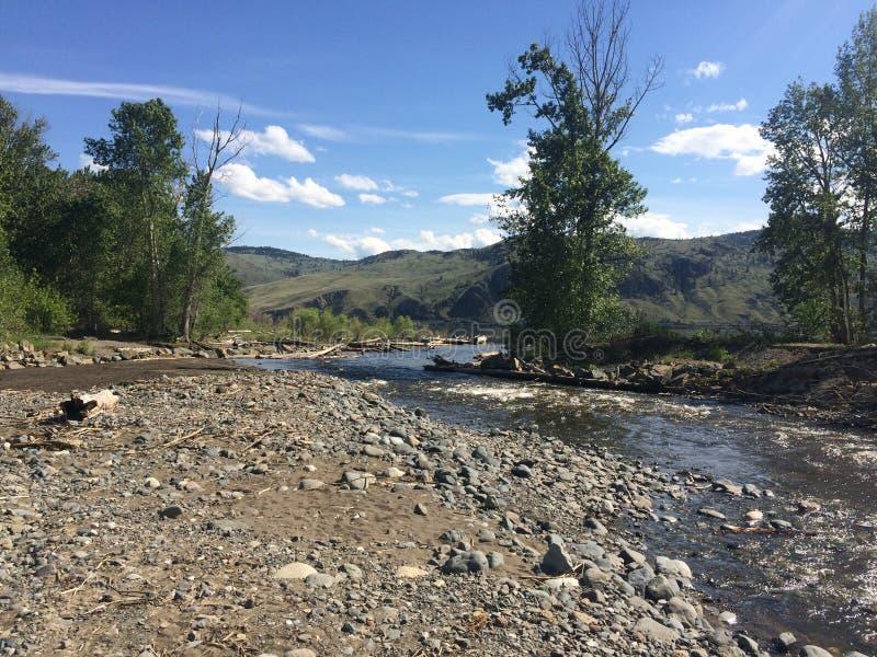 Пеший туризм около красивого потока Kamloops стоковая фотография rf