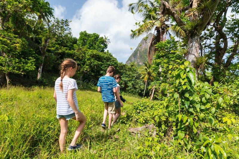 Пеший туризм семьи стоковые изображения