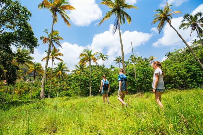 Пеший туризм семьи стоковое фото