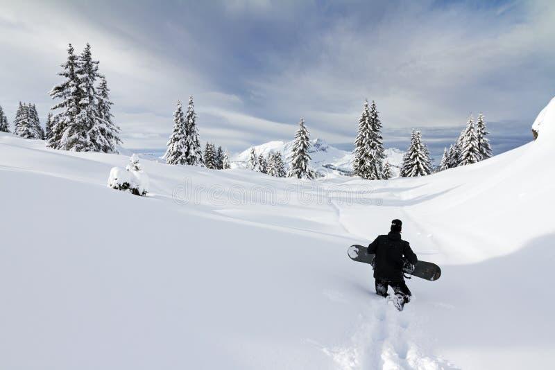 Пеший туризм сноуборда стоковая фотография rf