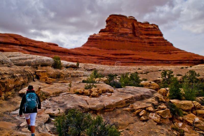 Пеший туризм Canyonlands стоковая фотография rf