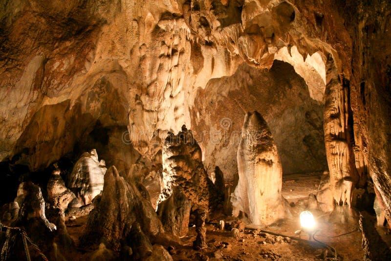 Пещера медведя, Румыния стоковые фотографии rf