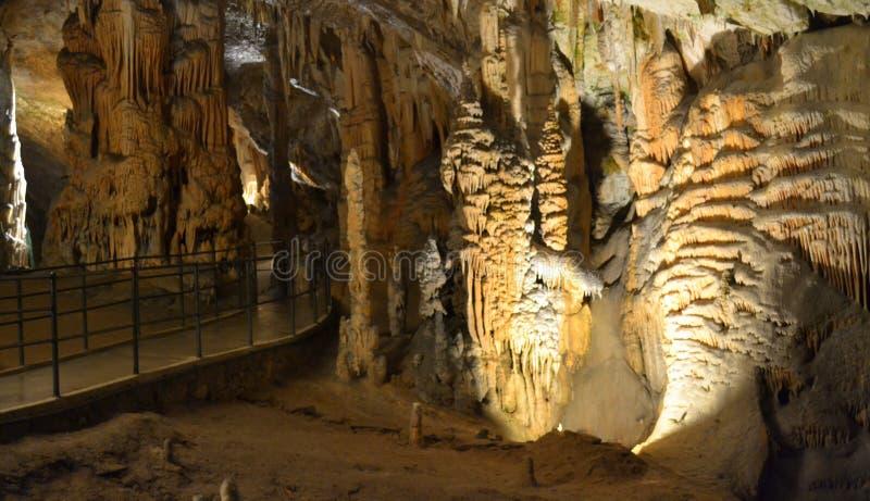 Пещера Словения Postojna стоковые изображения rf