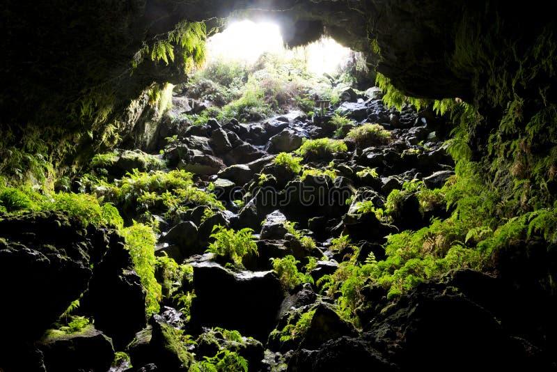 Пещера стоковые изображения