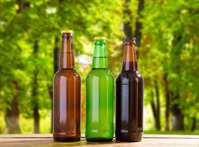 Пиво на таблице на запачканной предпосылке парка стоковые фотографии rf