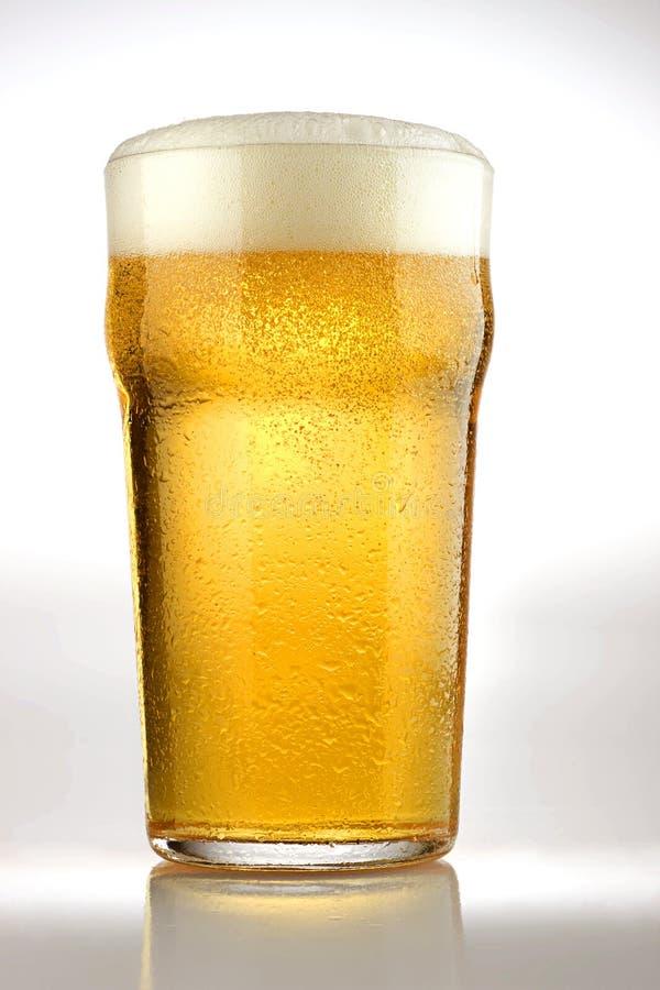пиво свежее стоковая фотография rf
