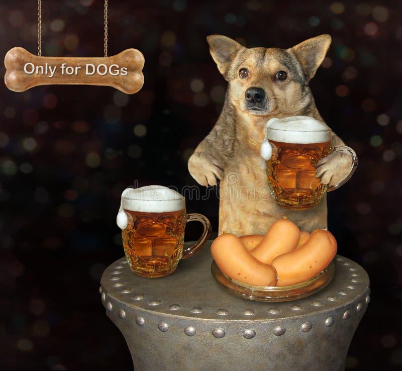 Пиво собаки выпивая в пабе бесплатная иллюстрация