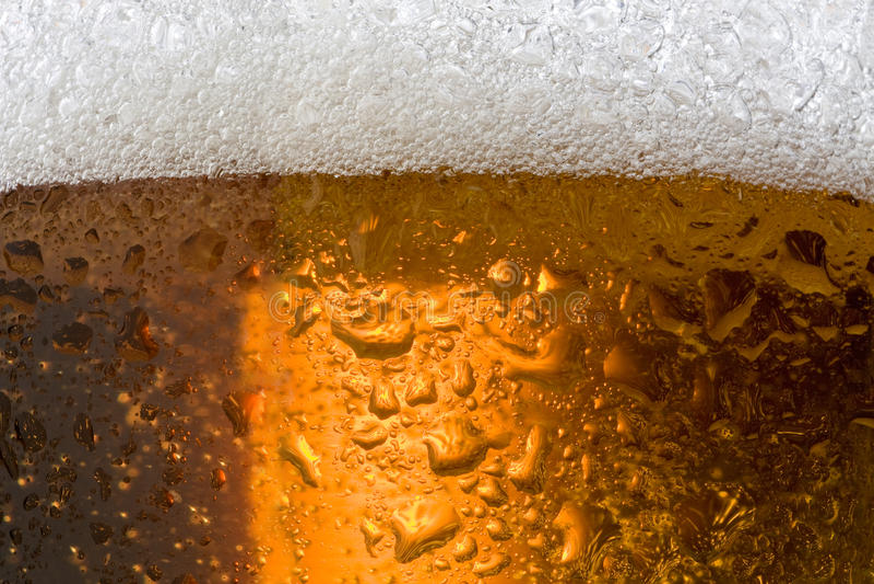 пиво стоковое изображение rf