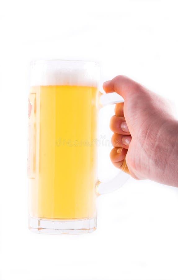 пиво стоковые фото