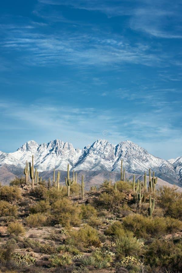 4 пика Аризона стоковое изображение rf
