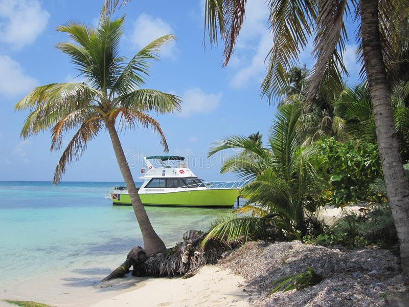 Пикирование и поездка на рыбалку избежания острова стоковое фото rf