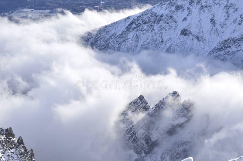 Пики гор Tatry в облаках стоковое фото rf