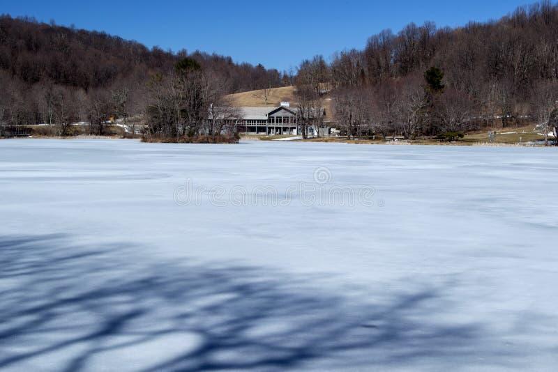 Пики ложи выдры в зиме стоковые фотографии rf