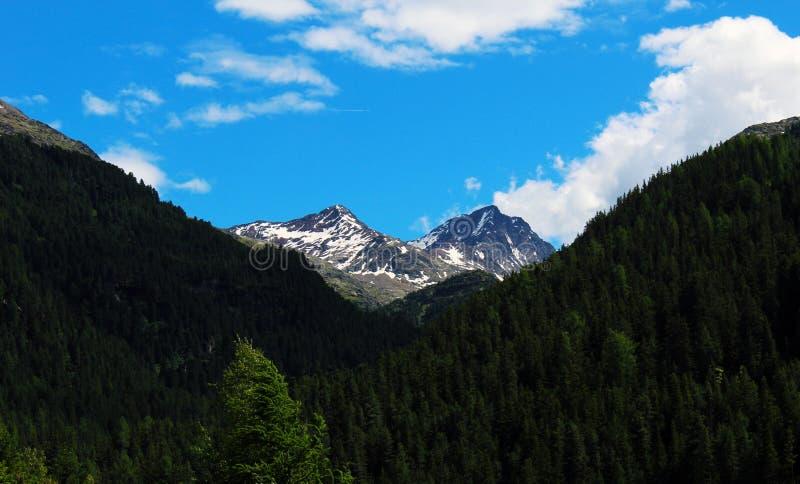 Пики покрытые снегом в высокогорной долине стоковое изображение