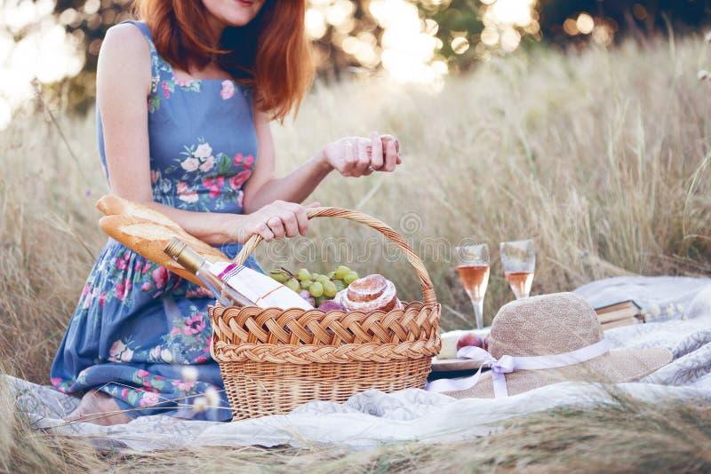 Пикник в луге стоковое изображение