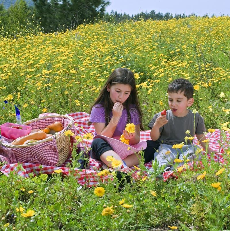 пикник девушки мальчика стоковая фотография