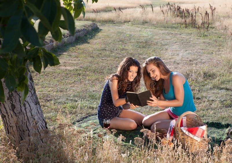 пикник книги хороший Стоковая Фотография RF