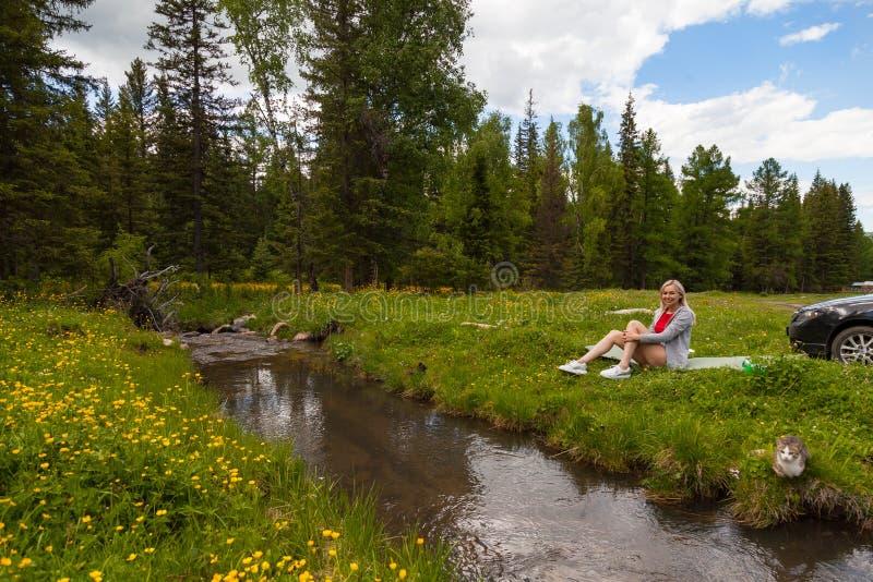 Пикник на банке реки горы с зеленой травой и желтыми цветками на фоне хвойных деревьев и сини стоковое фото