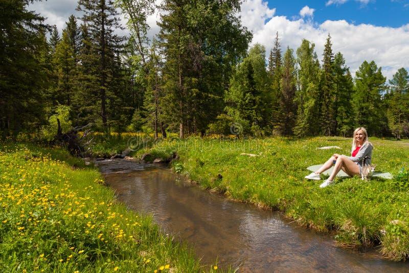 Пикник на банке реки горы с зеленой травой и желтыми цветками на фоне хвойных деревьев и сини стоковая фотография rf
