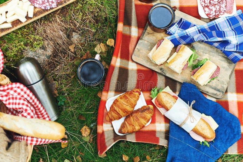 Пикник на лесе стоковое изображение
