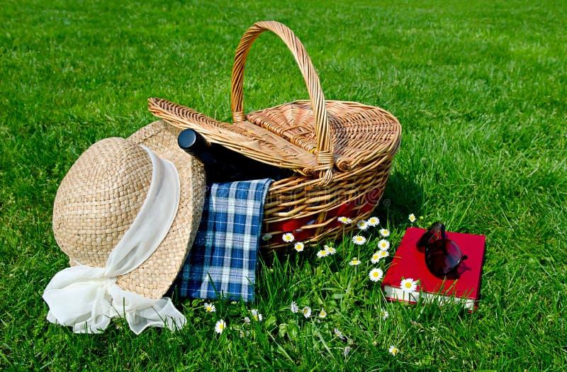 пикник поля корзины стоковые изображения