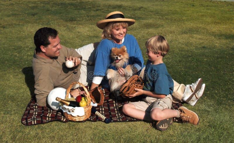 пикник семьи стоковое изображение rf
