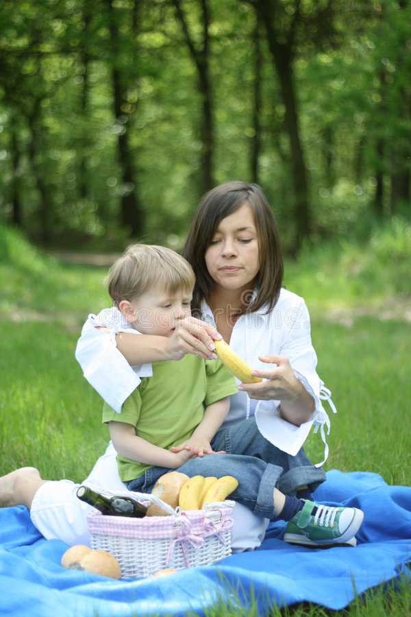 пикник семьи стоковое изображение