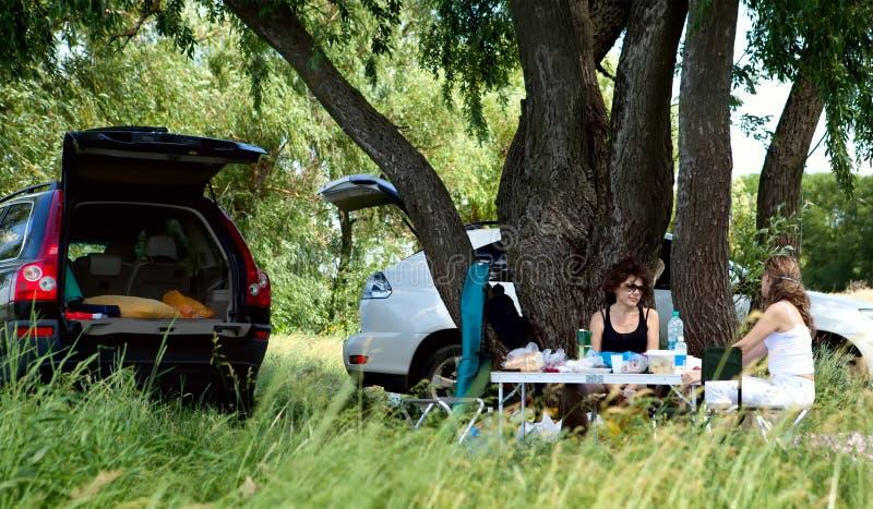 пикник стоковое фото rf