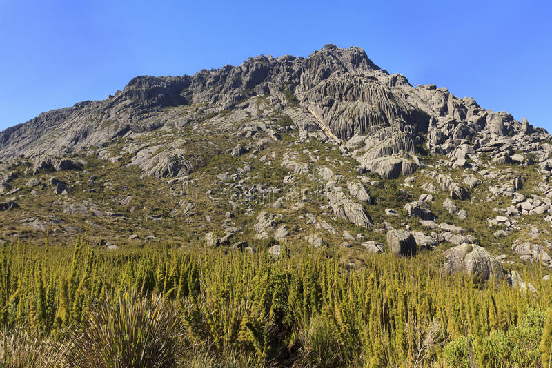 Пиковая гора Agulhas Negras (черных игл), Itatiaia, Бразилия стоковая фотография rf