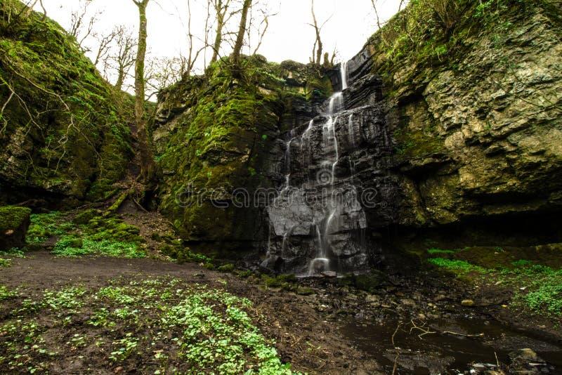 Пиковые деревья зимы водопада района стоковое изображение
