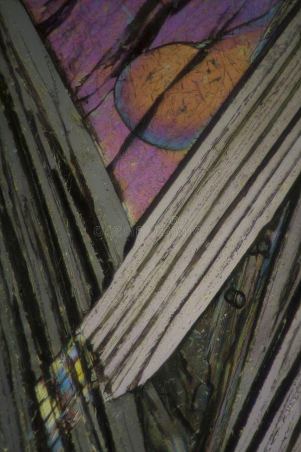 Пикриновая кислота под микроскопом стоковая фотография