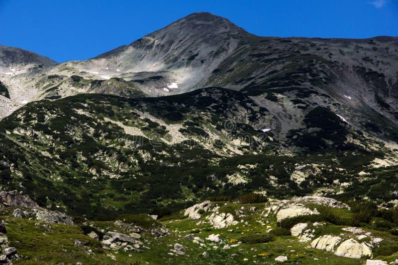 Пик Polezhan, ландшафт горы Pirin стоковое изображение rf